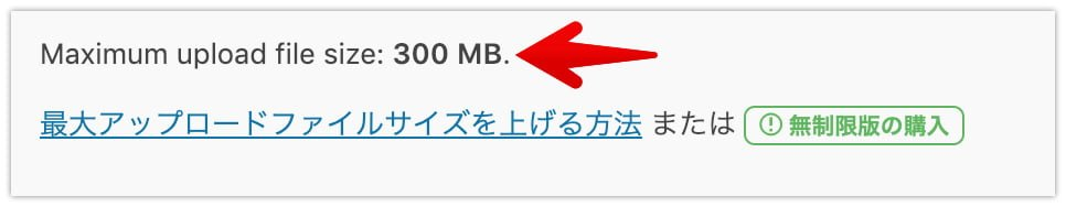 All-in-One WP Migrationアップロードサイズ